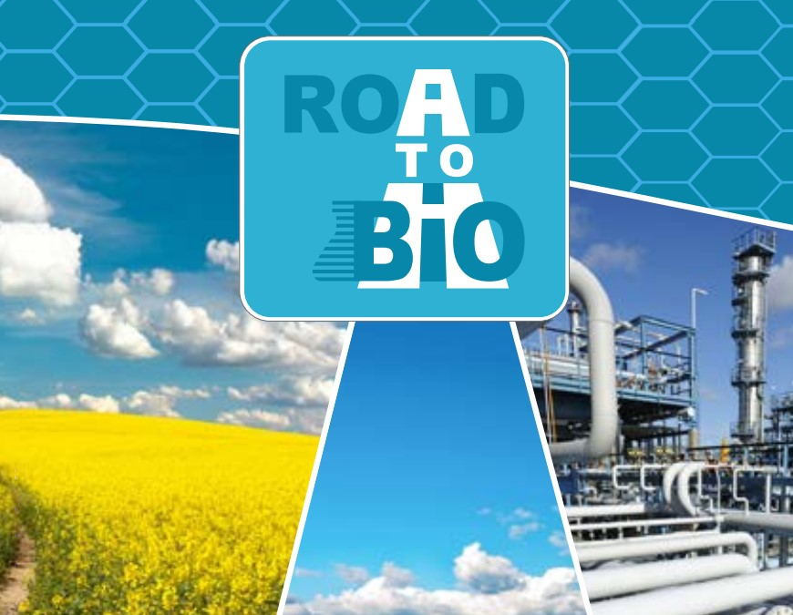 Roadmap for bio-based chemical industry